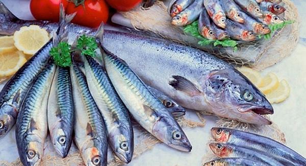 pescado azul fertilidad