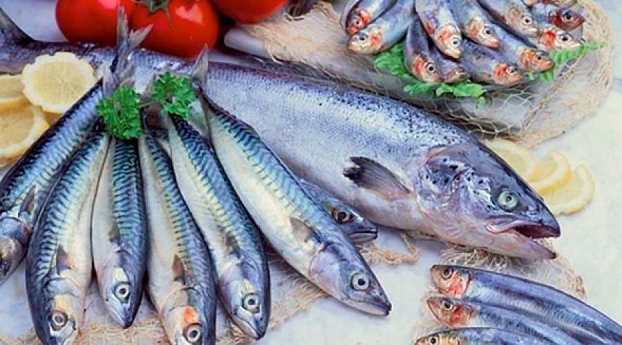 Los hombres que consumen más cantidad de pescado tienen un esperma de mayor  calidad - Men's App