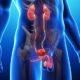 Tabaco y enfermedades urológicas