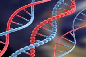 ¿Es hereditario el cáncer de próstata?