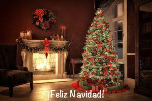 ¿De dónde viene la tradición del árbol de Navidad?