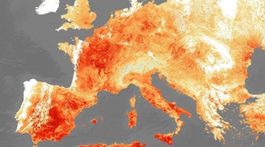 ¿Puede una ola de calor reducir la natalidad?